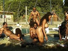 Backdoor and besides vaginal party at the pool