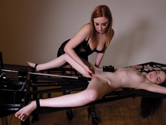 BDSM Newbie Humiliated