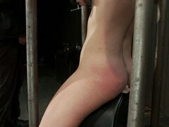 Device Bondage and the Sybian