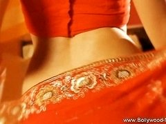 Bollywood Beauty Erotic Dancer