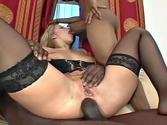 split that booty (the double anal dream)