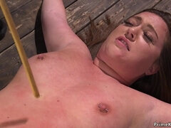 Chubby slave gets tormented on hogtie